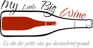 Logo Blog Little Big Wine partenaire Raviday Fromage